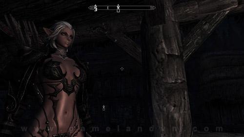 Nữ chiến binh Tera Online gợi cảm trong Skyrim 11